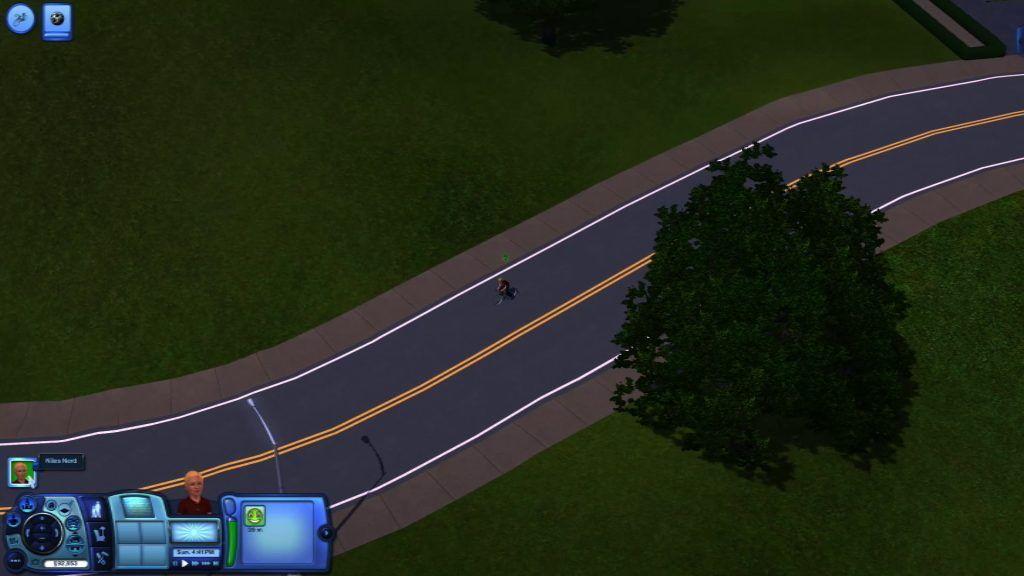 Sims 3 Neighbourhood